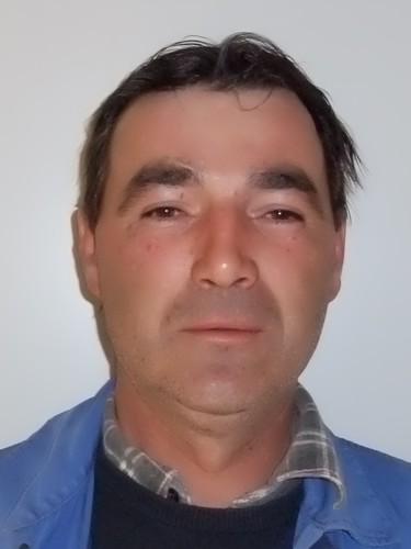 Dusko Lesic